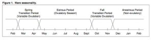 Figure 1. Mare seasonality.