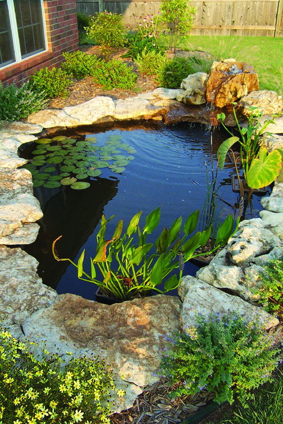 Water Gardens Are Not Swimming Pools Some Of Us Are Familiar With The  Management Of Swimming Pools. The Use Of Chemicals And Expensive Filters To  Keep Water ...