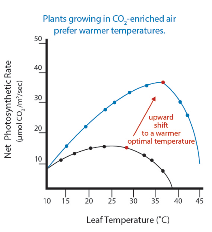 HLA-6723 Greenhouse Carbon Dioxide Supplementation » OSU Fact Sheets